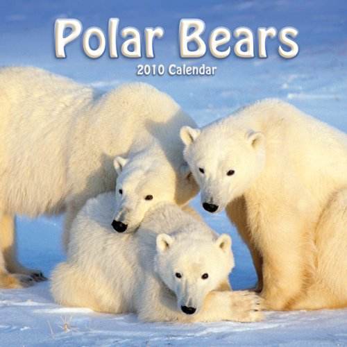 Polar Bears 2010 Wall Calendar