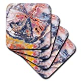 3D Rose Arizona Forest National Park Petrified Wood Detail Ceramic Tile Coasters, Multicolor