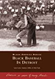 img - for Black Baseball in Detroit (Black America) by Larry Lester (2000-08-06) book / textbook / text book