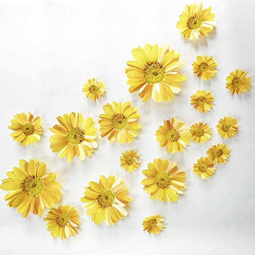 V-Time 20 pcs 3D Sunflower Wall Sticker Wall Decals DIY Flowers Stickers Peel and Stick Removable Art Home Decor Kids Nursery Stickers Party Deccals (Yellow) (Stickers Sunflower Wall)