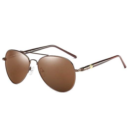 Yangjing-hl Gafas de Sol Moda Gafas de Sol Gafas de Sol ...
