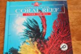 Animals of the Coral Reef, Lynn M. Stone, 1589521099