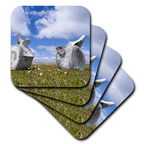 3dRose Danita Delimont - Whales - Whale vertebrae on Bleaker Island. - set of 4 Ceramic Tile Coasters (cst_314377_3) ()
