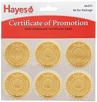 amazoncom hammond amp stephens va377 certificate of