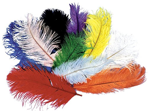 Morris Costumes Ostrich Plumes White