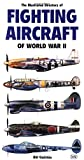 Illustrated Directory of Fighting Aircraft of World War II