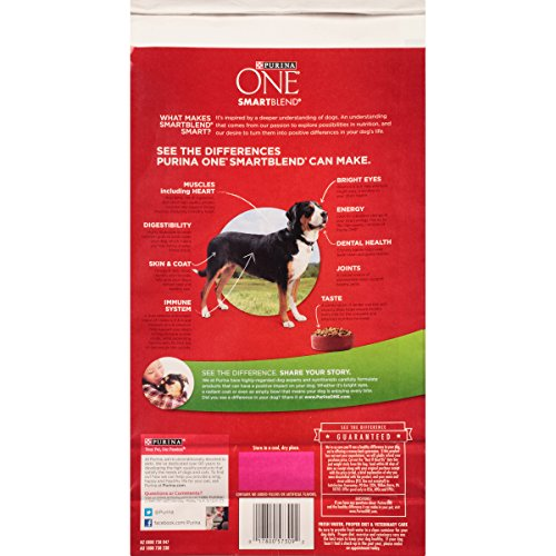 Purina-ONE-SmartBlend-Lamb-Rice-Formula-Dry-Dog-Food