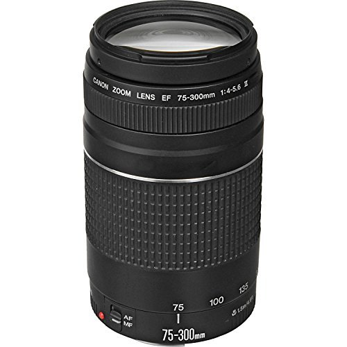 Canon EF 75-300mm f/4-5.6 III Telephoto Zoom Lens for Canon SLR Cameras, 6473A003 (Renewed) (Canon Extender Ef 1-4 X Iii Compatible Lenses)