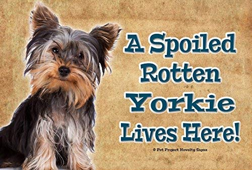 (Yorkshire Terrier Yorkie - A Spoiled Rotten Dog Lives Here 8x12 inch Metal Indoor Pet Dog Sign Plaque)