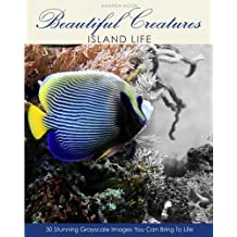 Beautiful Creatures: Island Life