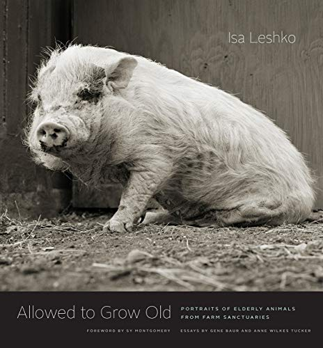 (Allowed to Grow Old: Portraits of Elderly Animals from Farm Sanctuaries)