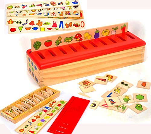 Wooden Sorting Toys for Baby - Wooden Sorting Box for Category Sorting - Wooden Matching Game Wooden Toys for 1 Year Old as Montessori Toys Educational Toys for Baby