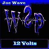 12 Volts