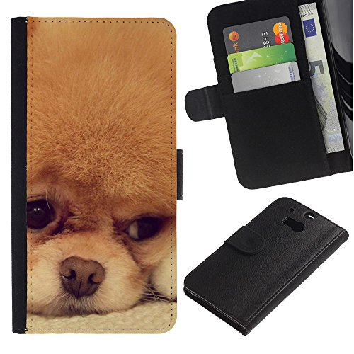 EuroCase - HTC One M8 - Pomeranian cinnamon orange breed dog - Cuero PU Delgado caso cubierta Shell Armor Funda Case Cover