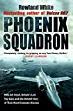 Phoenix Squadron: HMS Ark Royal, Britain's last Topguns and the untold story of their most dramatic mission