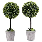 MyGift Artificial Boxwood Topiary Tree in Modern Gray Pulp Planter, Set of 2