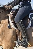 Intrepid-International-Equestrian-Jump-Bat