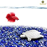 Turtle Water Conditioner by SunGrow – Protects Turtles, Amphibians & Reptile Pets & Owners from Salmonella - Contains Calcium for Shell Development - One Block Sufficient for 60 Days