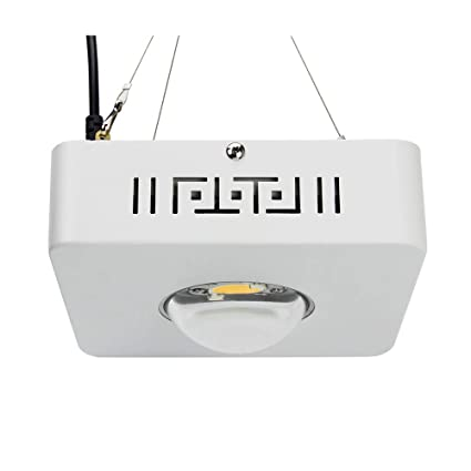 Led Lighting Cree Cxb3590 300w 12000lm 3500k Cob Led Grow Light Full Spectrum Use Meanwell Led Driver Replace Indoor Hps 400w Growing Lamp