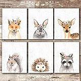 Woodland Animals Nursery Wall Art Prints (Set of 6) - Unframed - 8x10s