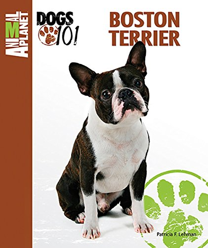 Animal Planet Dogs 101 Boston Terrier by Patricia F. Lehman (1-Dec-2013) Paperback - Dogs 101 Boston Terrier