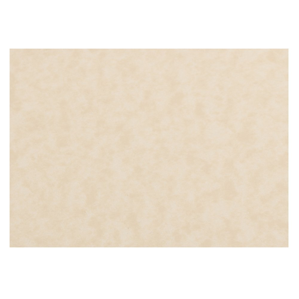JAM Paper Flat Note Cards - 3 1/2'' x 4 7/8'' - Natural Parchment - 50/Pack