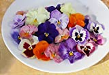 Edible Flowers Pansy 50 Count