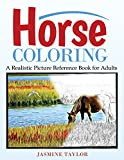 Horse Coloring: A Realistic Picture Reference Book for Adults