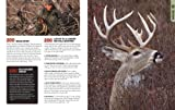 The Total Deer Hunter Manual (Field & Stream): 301 Hunting Skills You Need