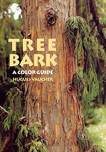 Tree Of Life Colors - Tree Bark: A Color Guide