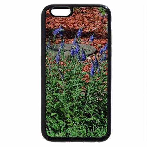 iPhone 6S / iPhone 6 Case (Black) Lavender Flowers