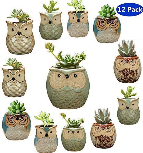 YLINGSU 2.5 Inch Owl Succulent Plants Pots Ceramic Set, Cactus Plant Pot,Mini Flower Pot, with A Hole Perfect owl Gifts 12 Pack