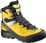 Salomon Women's X ALP MNT GTX W Hiking Boots, Grey Leather, 8.5 B