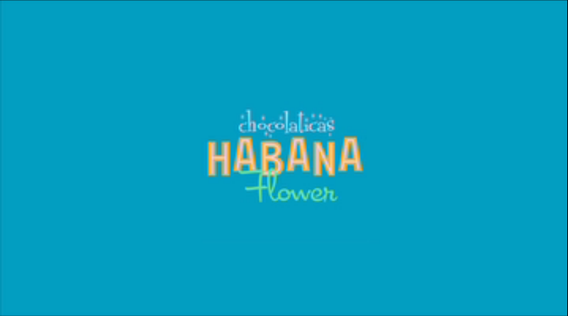 6acf7af9aa4f Hot Chocolate Design Chocolaticas Habana Flower Women s Mary ...