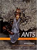 Ants of New Zealand, Warwick Don, 1877372471