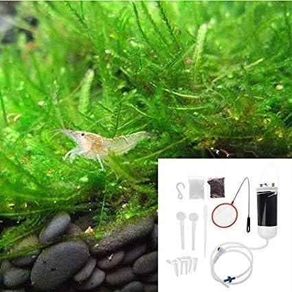 Fish & Aquatic Supplies Parts - Aquarium Shrimp Incubator