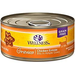 Wellness Natural Pet Food Canned Grain Free Wet Gravies Chicken Dinner Cat Food, 5.5 oz