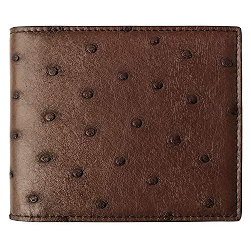 CHERRY CHICK Men's Luxury Ostrich Skin Bifold Handmade Wallet Father's Day Ideal Gift (Brown-Horizontal)