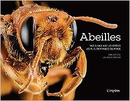 Abeilles : Face-à face avec les espèces les plus incroyables du monde