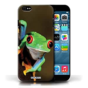 KOBALT? Protective Hard Back Phone Case / Cover for Apple iPhone 6/6S   Frog Design   Wildlife Animals Collection