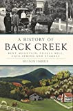 img - for A History of Back Creek: Bent Mountain, Poages Mill, Cave Spring and Starkey (Brief History) book / textbook / text book
