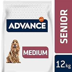 Advance Senior Medium – Pienso para Perros de Edad Avanzada de Razas Medianas – 12 kg