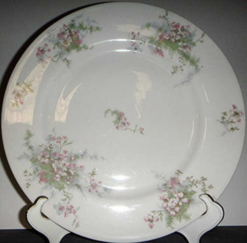 Haviland Apple Blossom (New York) Dinner Plate (No Gold Rim)