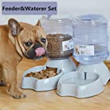 Pet Automatic Feeder Waterer,1 Gal Food Dispenser,Water Bowl for Cat Dog By Blessed family
