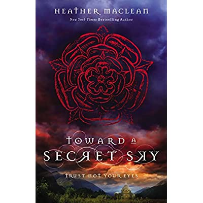 Book: Towards a Secret Sky