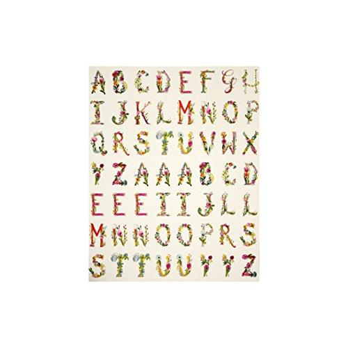 Art Gallery Fabrics Art Gallery Joie De Vivre Joyeux 34 in. Alphabet Panel, Alphabet by Art Gallery Fabrics