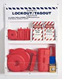 Honeywell LSE101F Complete Lockout Station, Small