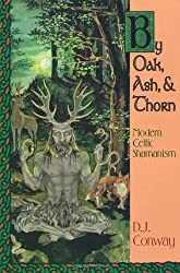 By Oak, Ash, & Thorn by Oak, Ash, & Thorn: Modern Celtic Shamanism (Llewellyn's Celtic Wisdom)