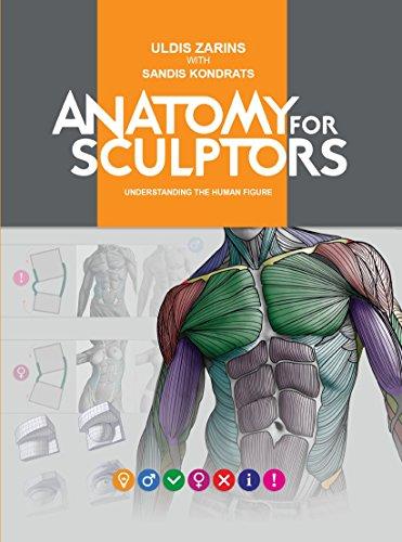 Anatomy For Sculptors, Understanding the Human - Figurative Sculpture
