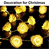 Sino Banyan Rose Flower String Lights,20 LED